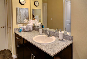 Photo of Bath Vanity within an Apartment at Martha's Vineyard Place Apartments